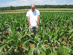 Milutin measuring soil moisture in corn field