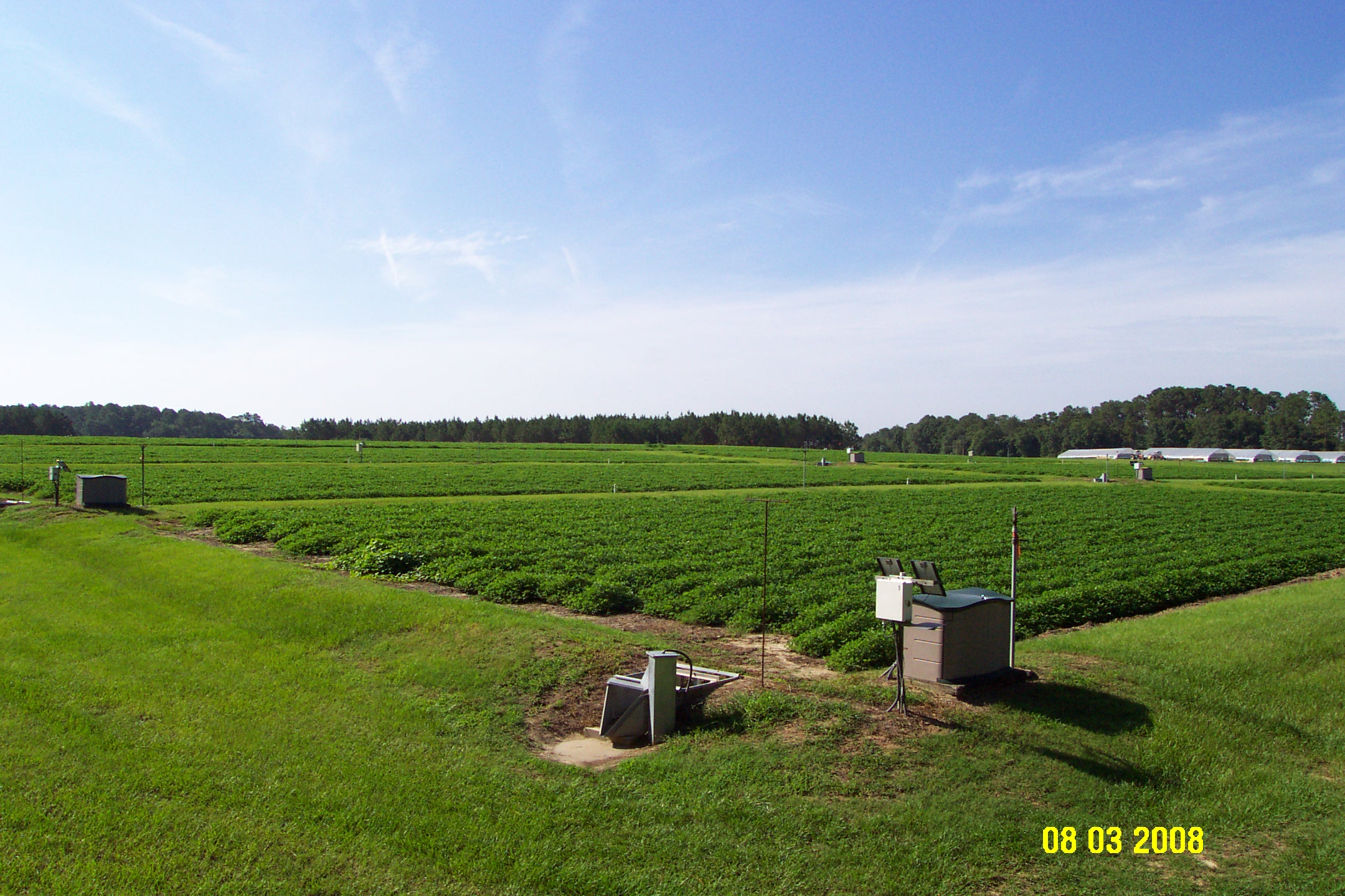 Tifton GA Surface Runoff Plots